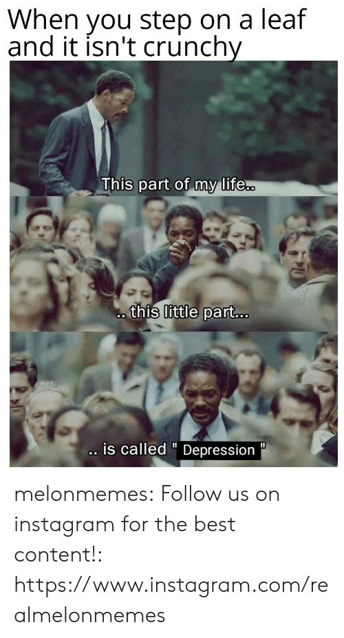 "Instagram, Life, and Tumblr: When you step on a leaf  and it isn't crunchy  This part of my life..  this little part...  .is called "" Depression  11 melonmemes:  Follow us on instagram for the best content!: https://www.instagram.com/realmelonmemes"