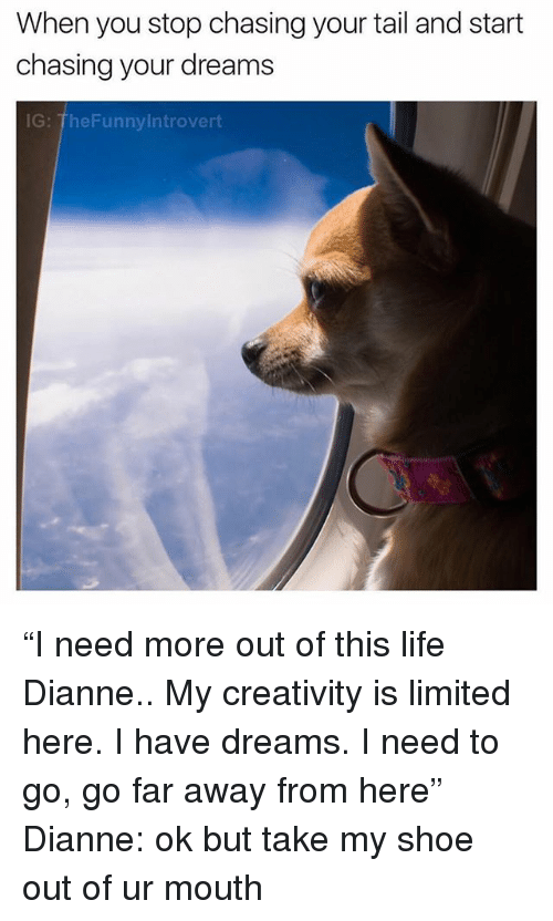 """Life, Limited, and Dank Memes: When you stop chasing your tail and start  chasing your dreams  G: TheFunnylntrovert """"I need more out of this life Dianne.. My creativity is limited here. I have dreams. I need to go, go far away from here"""" Dianne: ok but take my shoe out of ur mouth"""