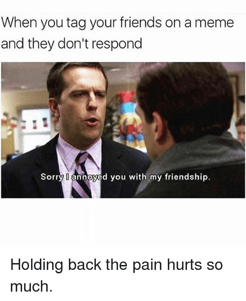 Friends, Meme, and Memes: When you tag your friends on a meme  and they don't respond  Sorry U annoyed you with my friendship Holding back the pain hurts so much.