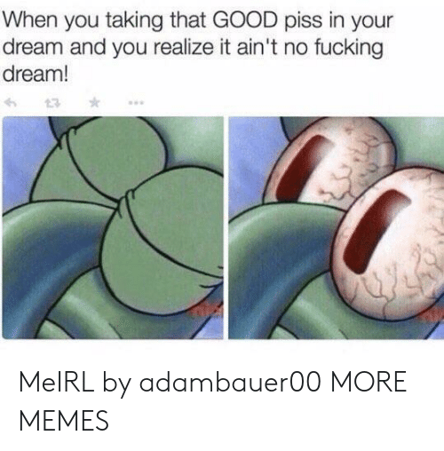 Dank, Fucking, and Memes: When you taking that GOOD piss in your  dream and you realize it ain't no fucking  dream! MeIRL by adambauer00 MORE MEMES