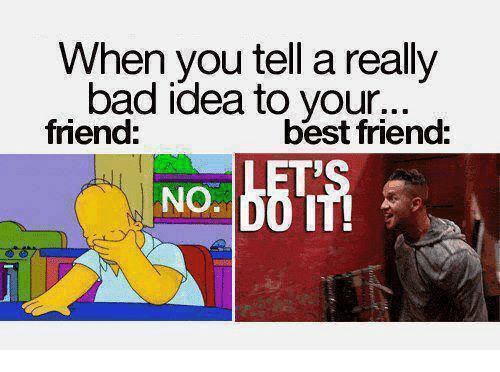 Friends Best Friend: When you tell a really  bad idea to your.d  friend:  best friend:  NO.0