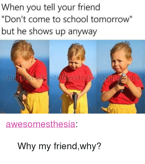 """school tomorrow: When you tell your friend  """"Don't come to school tomorrow""""  but he shows up anyway  Li  shutterstck shuerstock shu <p><a href=""""http://awesomesthesia.tumblr.com/post/173060314843/why-my-friendwhy"""" class=""""tumblr_blog"""">awesomesthesia</a>:</p>  <blockquote><p>Why my friend,why?</p></blockquote>"""