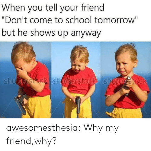"""school tomorrow: When you tell your friend  """"Don't come to school tomorrow""""  but he shows up anyway  Li  shutterstck shuerstock shu awesomesthesia:  Why my friend,why?"""