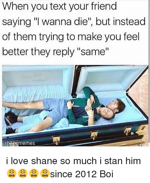 "Love, Memes, and Stan: When you text your friend  saying ""I wanna die"", but instead  of them trying to make you feel  better they reply ""same""  sharrememes i love shane so much i stan him 😩😩😩😩since 2012 Boi"