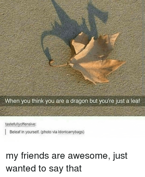 tastefully offensive: When you think you are a dragon but you're just a leaf  tastefully offensive:  I Beleafin yourself (photo via idontcarrybags) my friends are awesome, just wanted to say that
