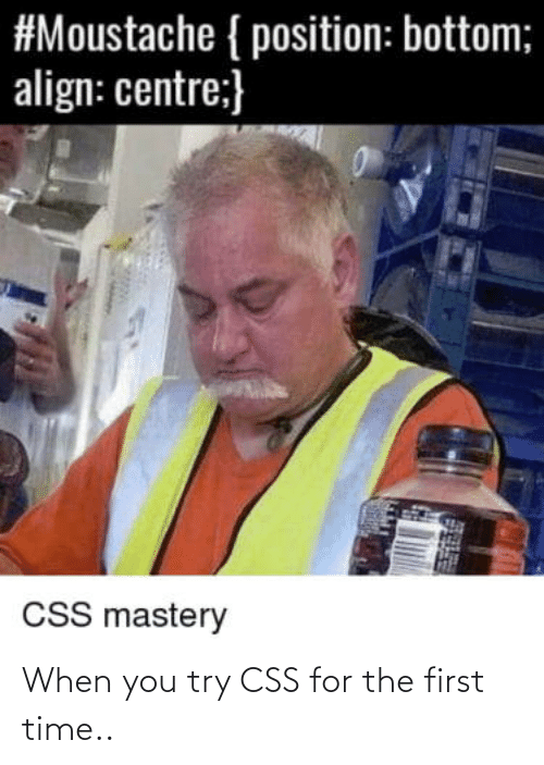 Try: When you try CSS for the first time..