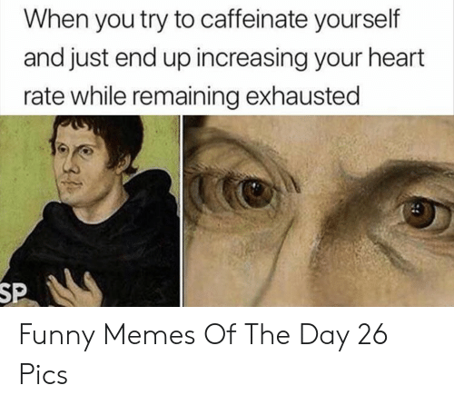 Funny, Memes, and Heart: When you try to caffeinate yourself  and just end up increasing your heart  rate while remaining exhausted  SP Funny Memes Of The Day 26 Pics