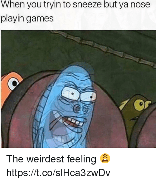 Games, You, and Nose: When you tryin to sneeze but ya nose  playin games The weirdest feeling 😩 https://t.co/slHca3zwDv