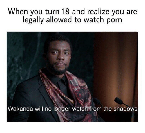 Porn, Watch, and Will: When you turn 18 and realize you  legally allowed to watch porn  Wakanda will no longer watch from the shadows