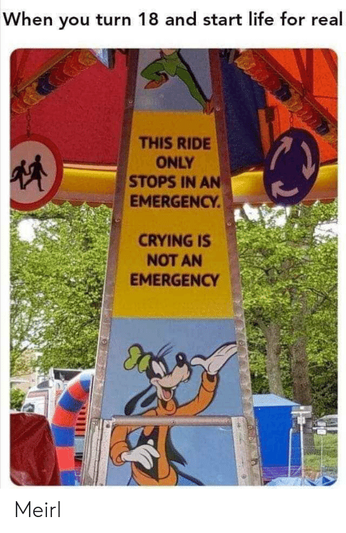 Crying, Life, and MeIRL: When you turn 18 and start life for real  THIS RIDE  ONLY  STOPS IN AN  EMERGENCY.  CRYING IS  NOT AN  EMERGENCY Meirl