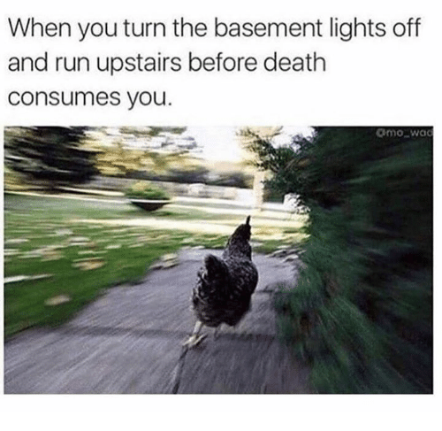 Run, Death, and Lights: When you turn the basement lights off  and run upstairs before death  consumes you  mo wa