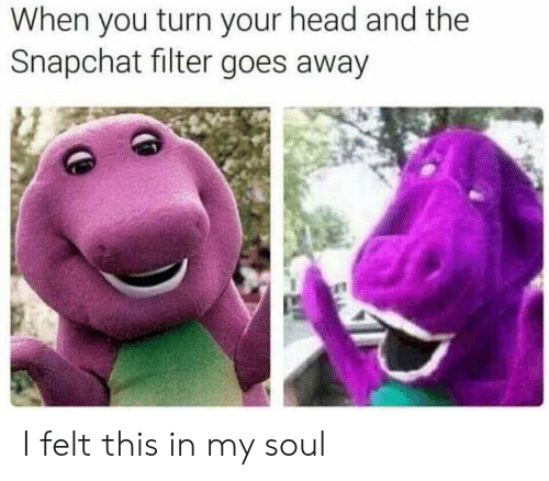 Snapchat Filter: When you turn your head and the  Snapchat filter goes away I felt this in my soul