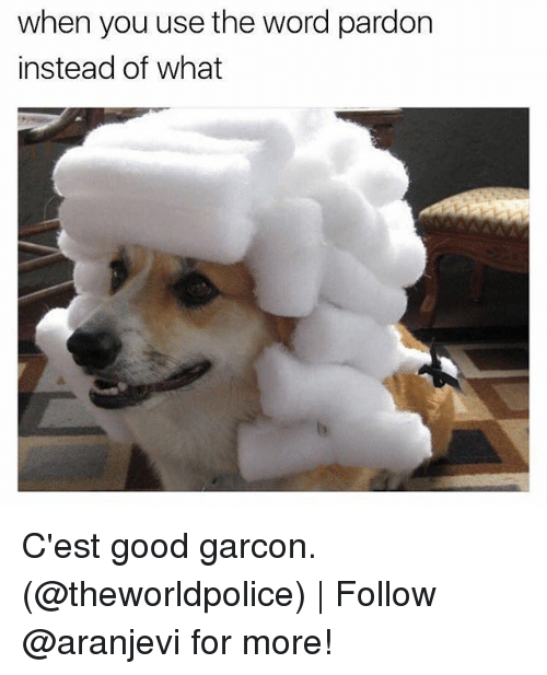 garcon: when you use the word pardon  instead of what C'est good garcon. (@theworldpolice) | Follow @aranjevi for more!