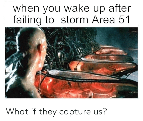 Area 51, Storm, and Wake: when you wake up after  failing to storm Area 51 What if they capture us?
