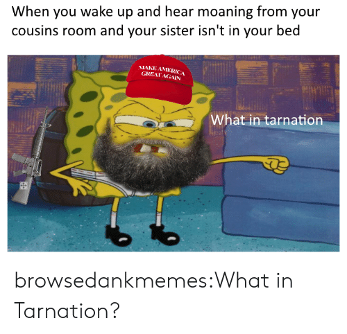 Great Again: When you wake up and hear moaning from your  cousins room and your sister isn't in your bed  MAKE AMERICA  GREAT AGAIN  What in tarnation browsedankmemes:What in Tarnation?