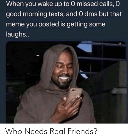Friends, Meme, and Real Friends: When you wake up to 0 missed calls, O  good morning texts, and O dms but that  meme you posted is getting some  laughs.. Who Needs Real Friends?