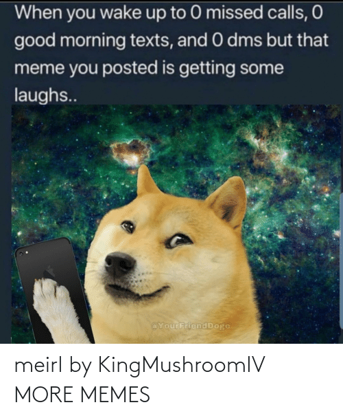 Good Morning: When you wake up to 0 missed calls, O  good morning texts, and 0 dms but that  meme you posted is getting some  laughs..  @YourFriend Doge meirl by KingMushroomIV MORE MEMES