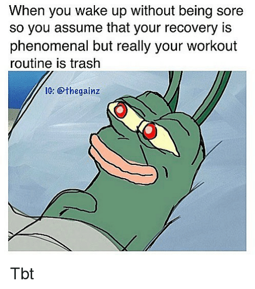 Memes, Phenomenal, and Tbt: When you wake up without being sore  so you assume that your recovery is  phenomenal but really your workout  routine is trash  Ic: @thegainz Tbt