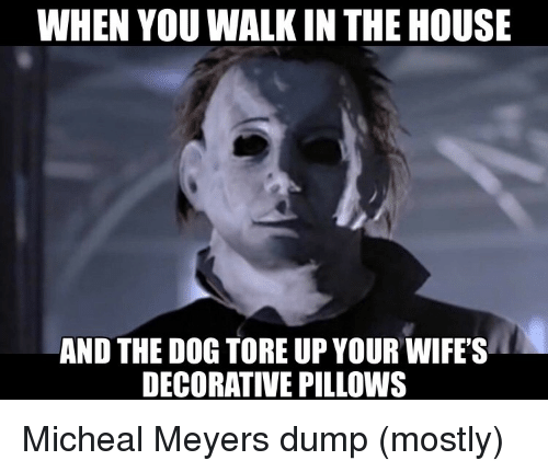 House, Dog, and You: WHEN YOU WALK IN THE HOUSE  AND THE DOG TORE UP YOUR WIFE'S  DECORATIVE PILLOWS Micheal Meyers dump (mostly)