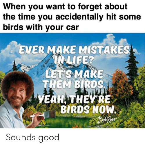 Life, Yeah, and Birds: When you want to forget about  the time you accidentally hit some  birds with your c  EVER MAKE MISTAKES  IN LIFE?  LETS MAKE  THEM BIRDS  YEAH THEYRE  T  BIRDS NOW Sounds good