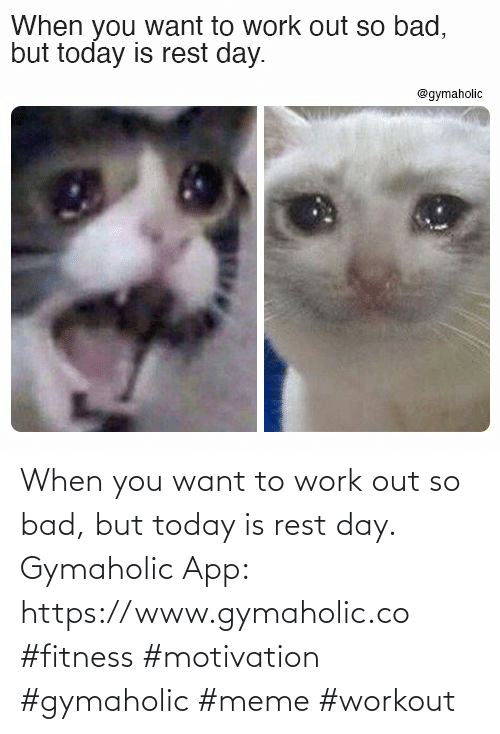 rest: When you want to work out so bad, but today is rest day.  Gymaholic App: https://www.gymaholic.co  #fitness #motivation #gymaholic #meme #workout