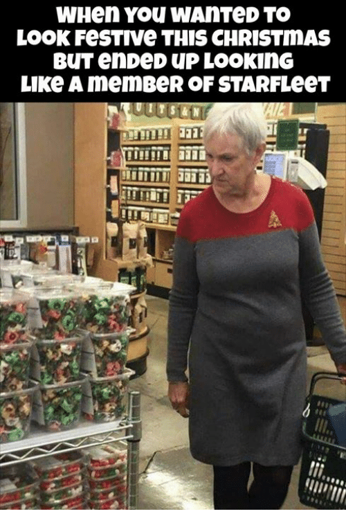 Christmas, Memes, and 🤖: WHen YOU WAnTeD TO  LOOK FesTIve THIS CHRISTMAS  LIKe A memBeR OF STARFLeeT
