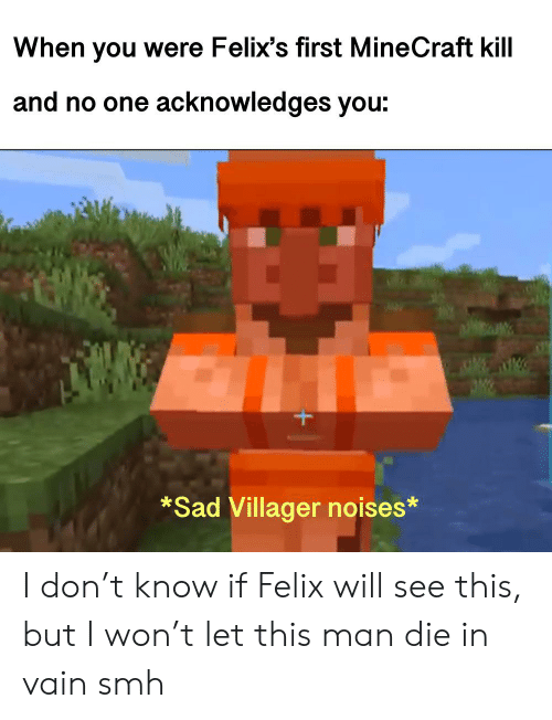 die-in-vain: When you were Felix's first MineCraft kill  and no one acknowledges you:  *Sad Villager noises* I don't know if Felix will see this, but I won't let this man die in vain smh