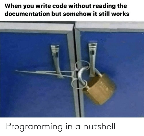 code: When you write code without reading the  documentation but somehow it still works Programming in a nutshell