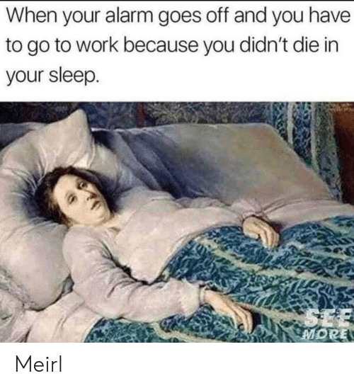 go to work: When your alarm goes off and you have  to go to work because you didn't die in  your sleep.  SEE  MORE Meirl