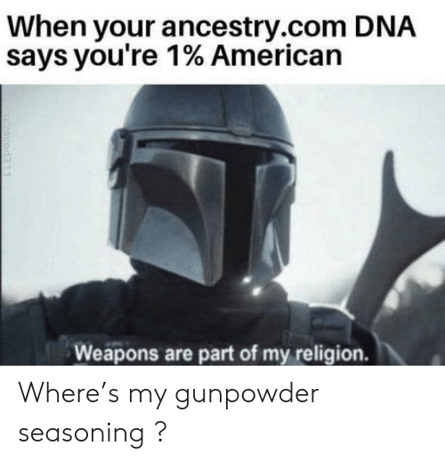 My Religion: When your ancestry.com DNA  says you're 1% American  Weapons are part of my religion.  zavod311 Where's my gunpowder seasoning ?