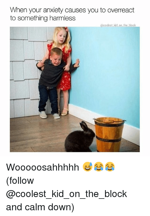 Overreaction: When your anxiety causes you to overreact  to something harmless  @coolest kid on the block Wooooosahhhhh 😅😂😂 (follow @coolest_kid_on_the_block and calm down)