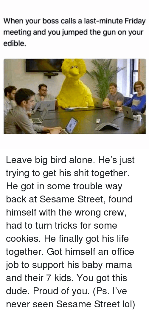Being Alone, Cookies, and Dude: When your boss calls a last-minute Friday  meeting and you jumped the gun on your  edible.  ar Leave big bird alone. He's just trying to get his shit together. He got in some trouble way back at Sesame Street, found himself with the wrong crew, had to turn tricks for some cookies. He finally got his life together. Got himself an office job to support his baby mama and their 7 kids. You got this dude. Proud of you. (Ps. I've never seen Sesame Street lol)