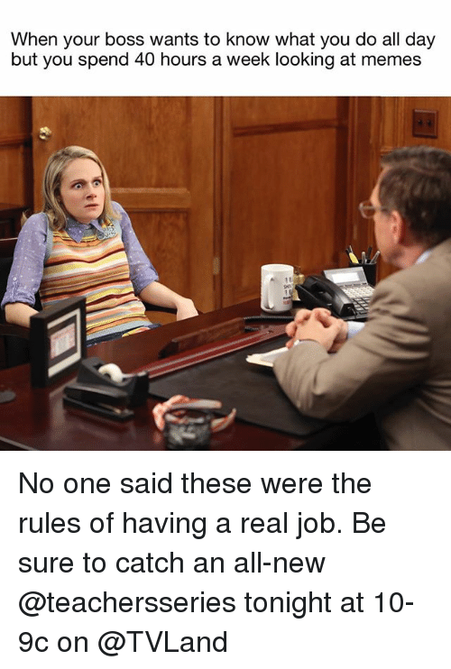 Memes, Girl Memes, and Job: When your boss wants to know what you do all day  but you spend 40 hours a week looking at memes No one said these were the rules of having a real job. Be sure to catch an all-new @teachersseries tonight at 10-9c on @TVLand