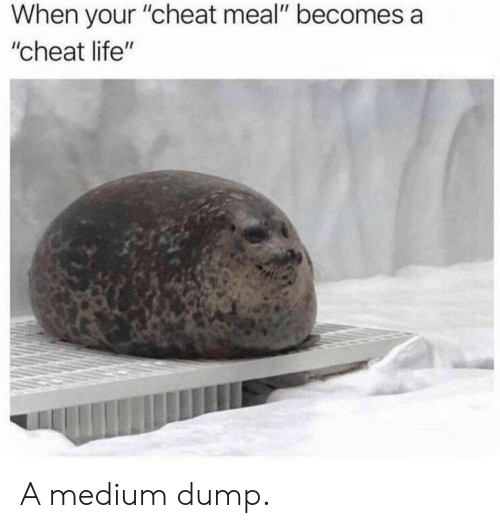 "Life, Medium, and Cheat: When your ""cheat meal"" becomes a  ""cheat life"" A medium dump."