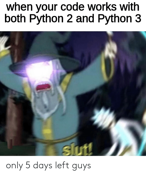 5 Days: when your code works with  both Python 2 and Python 3  slut! only 5 days left guys