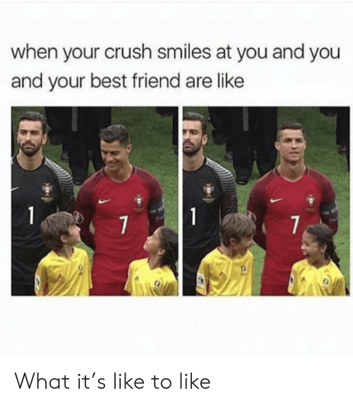 Best Friend, Crush, and Best: when your crush smiles at you and you  and your best friend are like  1  1  7  7 What it's like to like