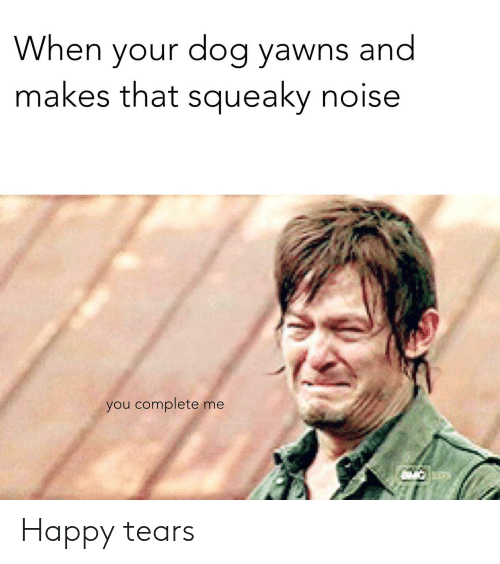 Happy, Dog, and You: When your dog yawns and  makes that squeaky noise  you complete me Happy tears