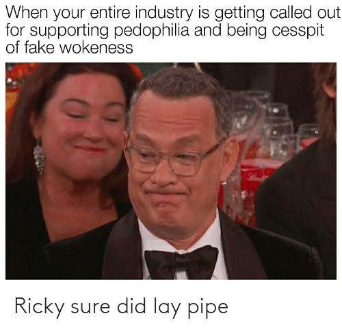 Supporting: When your entire industry is getting called out  for supporting pedophilia and being cesspit  of fake wokeness Ricky sure did lay pipe