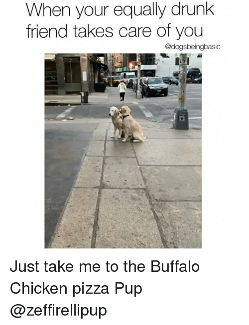 buffalo chicken: When your equally drunk  friend takes care of you  @dogsbeingbasic Just take me to the Buffalo Chicken pizza Pup @zeffirellipup
