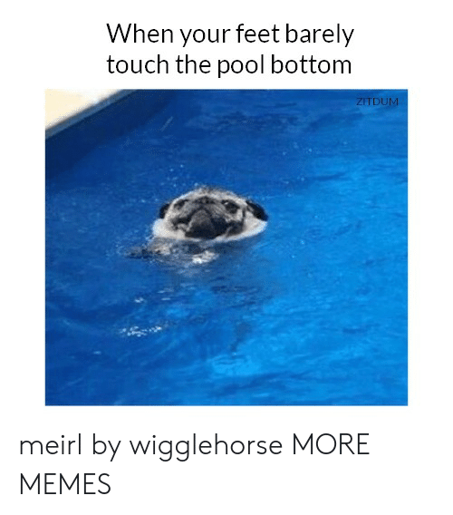 Dank, Memes, and Target: When your feet barely  touch the pool bottom  ZITDUM meirl by wigglehorse MORE MEMES