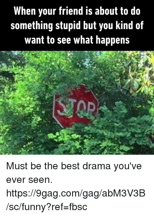 Do Something Stupid: When your friend is about to do  something stupid but you kind of  want to see what happens Must be the best drama you've ever seen.  https://9gag.com/gag/abM3V3B/sc/funny?ref=fbsc