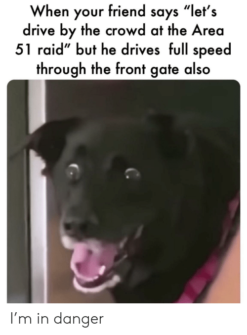 "gate: When your friend says ""let's  drive by the crowd at the Area  51 raid"" but he drives full speed  through the front gate also I'm in danger"