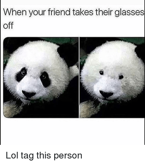 Funny, Lol, and Glasses: When your friend takes their glasses  off Lol tag this person