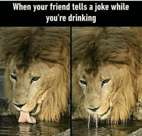Drinking, Memes, and 🤖: When your friend tells a joke while  you're drinking