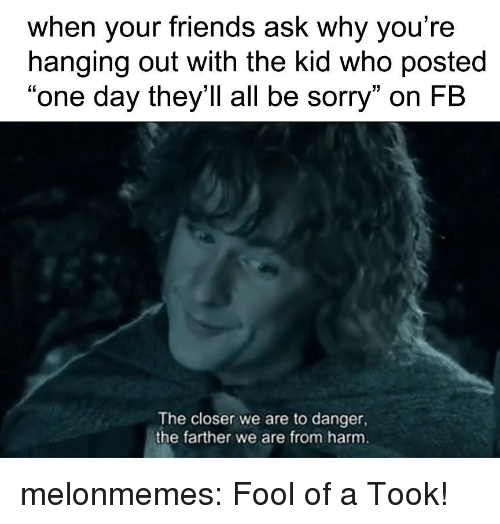 "The Closer: when your friends ask why you're  hanging out with the kid who posted  ""one day they'll all be sorry"" on FB  The closer we are to danger,  the farther we are from harm melonmemes:  Fool of a Took!"