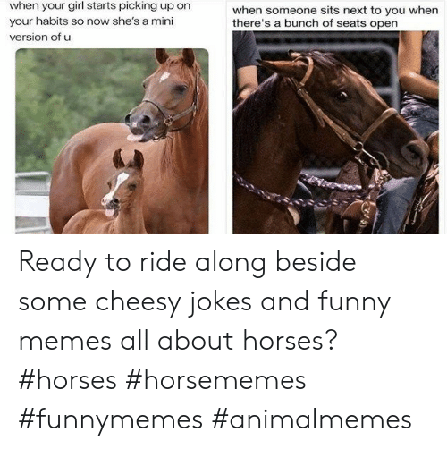 Habits: when your girl starts picking up on  when someone sits next to you when  there's a bunch of seats open  your habits so now she's a mini  version of u Ready to ride along beside some cheesy jokes and funny memes all about horses?#horses #horsememes #funnymemes #animalmemes
