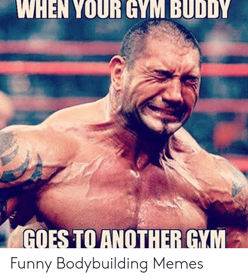 Funny, Gym, and Memes: WHEN YOUR GYM BUDDY  GOES TO ANOTHER GYM Funny Bodybuilding Memes