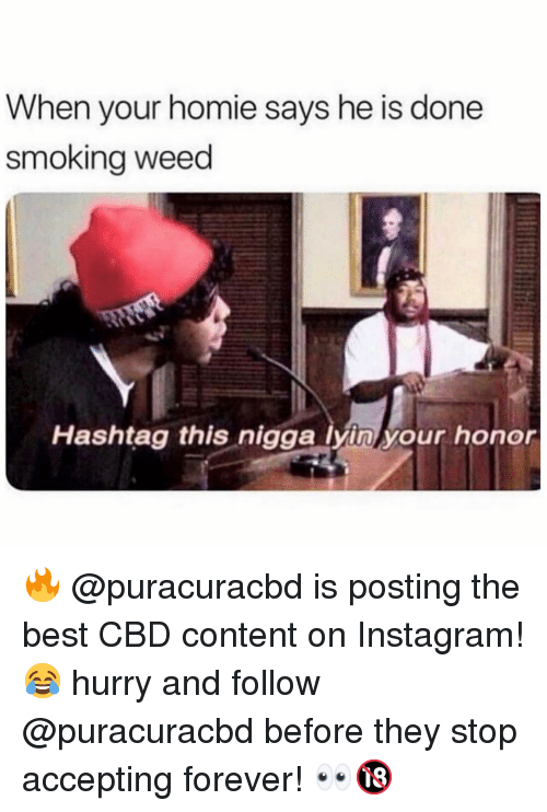 Lyin: When your homie says he is done  smokina weed  Hashtag this nigga lyin your honor 🔥 @puracuracbd is posting the best CBD content on Instagram! 😂 hurry and follow @puracuracbd before they stop accepting forever! 👀🔞