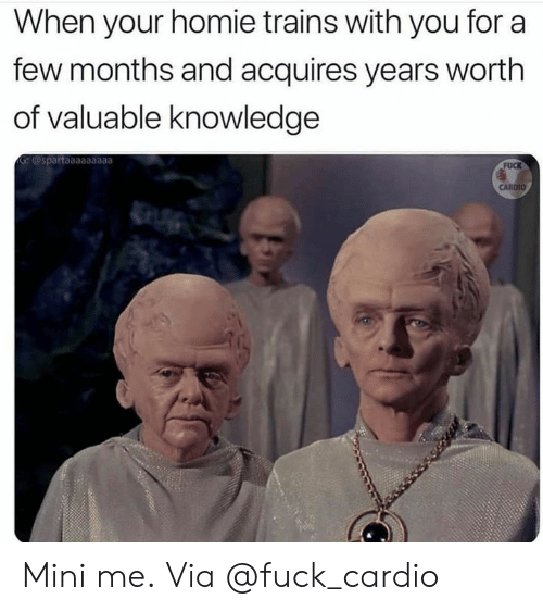 Homie, Mini-Me, and Fuck: When your homie trains with you for a  few months and acquires years worth  of valuable knowledge  G:@spartaaaaaaaaa  FUCK  CARDIO Mini me. Via @fuck_cardio