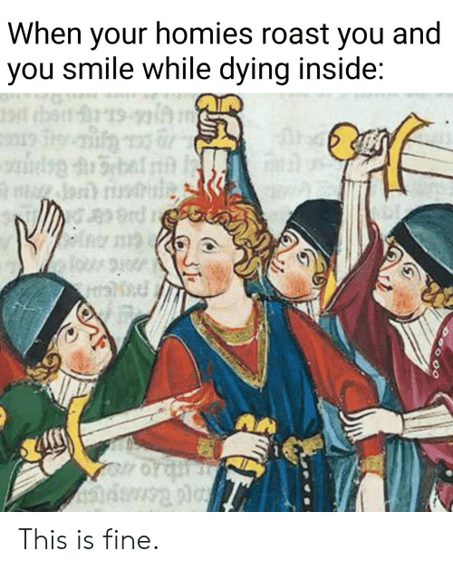 Roast, Smile, and You: When your homies roast you and  you smile while dying inside:  19  rd This is fine.